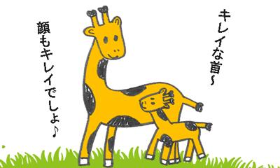 キリンの親子が首がキレイだと褒められているイラスト
